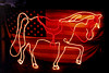 2001 JAN Horse lights and flag 01