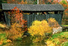 WV 1994 small covered bridge