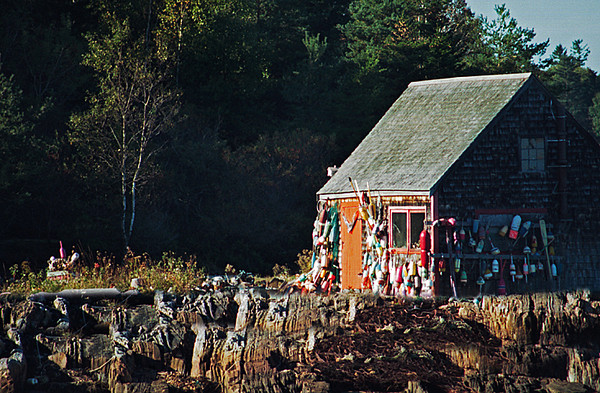 1996 ME Fishing shack in morning sun