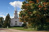 1991 VT Church and big tree