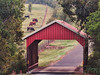 2014 10 10 WC Covered bridge at the Meadows of CH