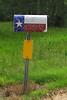 TX 2013 postal bling