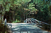 NH 1987 wooden bridge