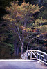 NH 1987 wooden bridge and trees