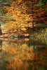 1987 NH Hanover October Occum Pond reflections on the Dartmouth campus