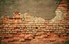 1992 TX Exposed bricks